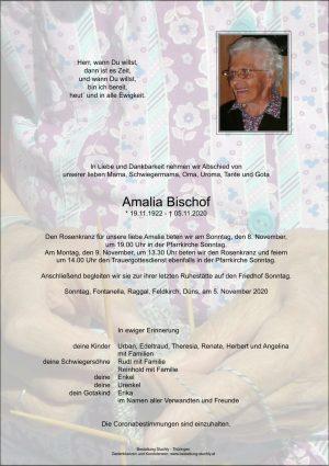 Portrait von Amalia Bischof